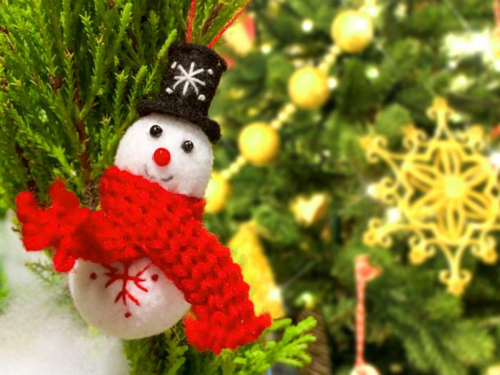 カナダの保育園の夢のあるクリスマス会