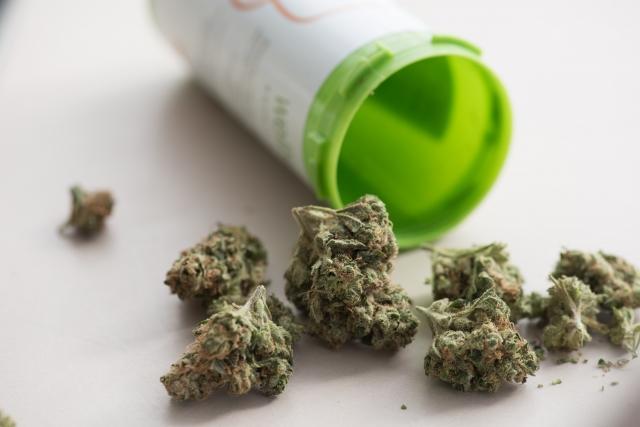 カナダ本当に大丈夫!?カナダでマリファナ(大麻)が合法化されました。